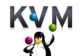 linux Vps at Hostnetindia